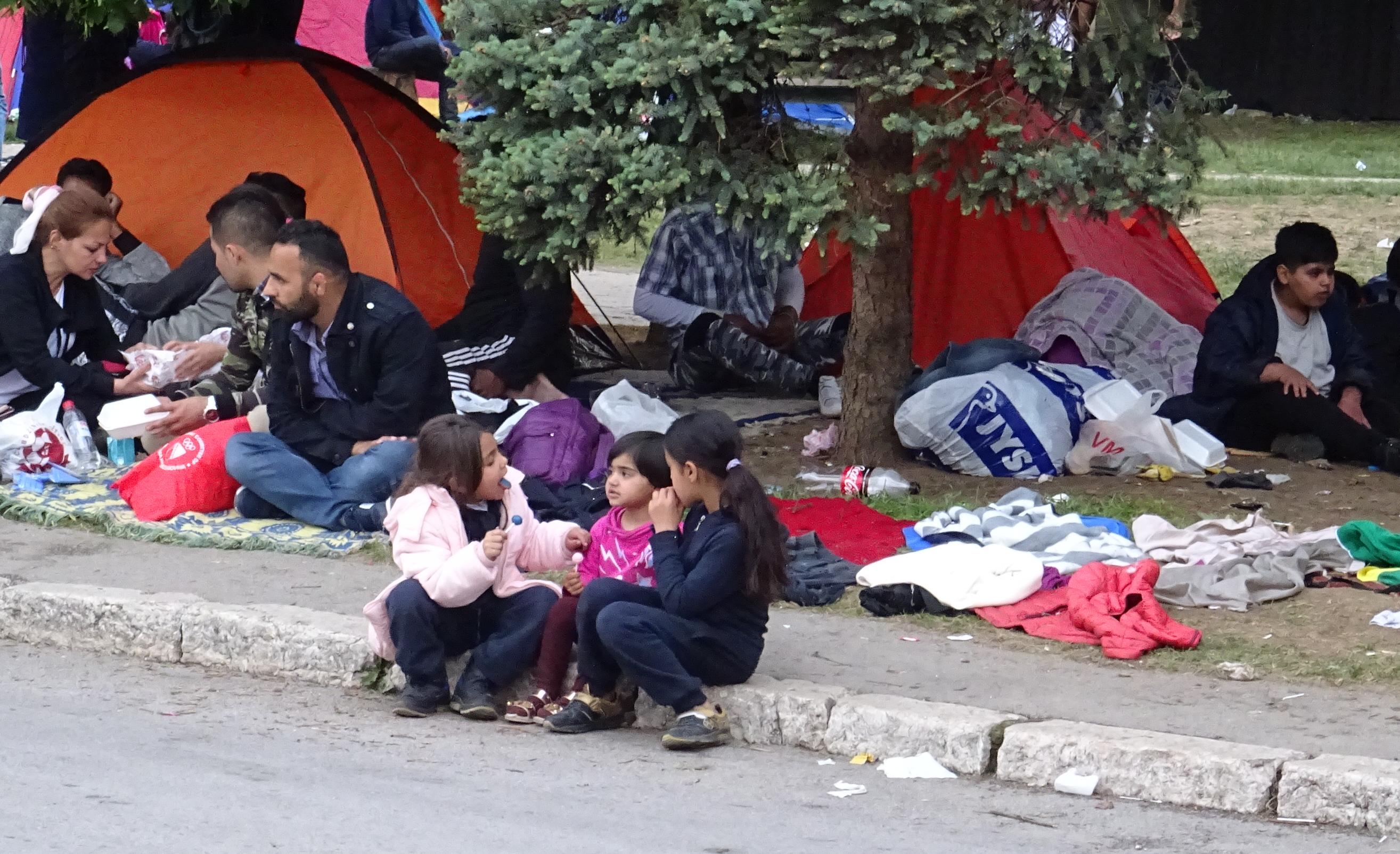 """Ubijen migrant: Ponovo """"nesretan"""" slučaj"""
