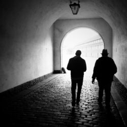 (Kriminalna?) organizacija koju predvodi Memić i tzv. advokat Feraget nastavlja terorisanje javnosti, zatvaranje nevinih ljudi i poziva na rušenje institucija BiH